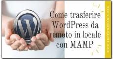Come trasferire WordPress da remoto in locale con MAMP